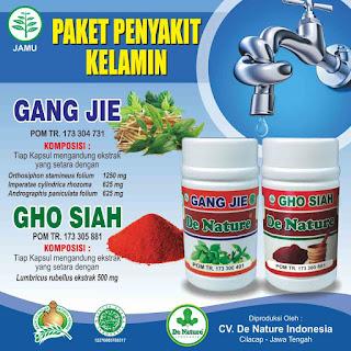 Obat gonore herbal alami