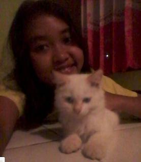 Kitten.... lopeku:v