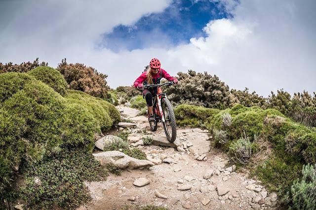 mountainbike urlaub elba