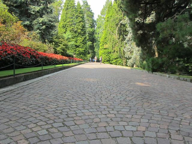 Viale delle Conifere Giardini Villa Taranto
