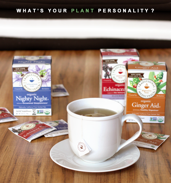 Share Your Plant Personality and Win a Personalized Tea Set from Traditional Medicinals and Bubby & Bean!