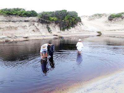 Mutirão de limpeza na Barra do Teodoro em Ilha Comprida