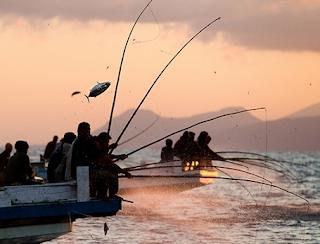 teknik mancing ikan huhate
