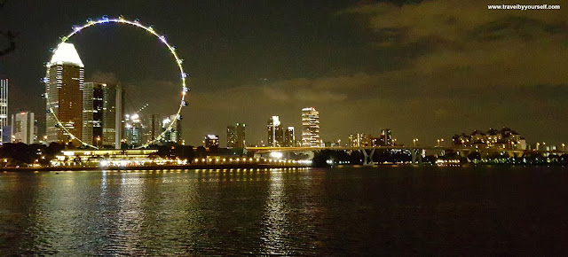 View of Singapore Flyer from Gardens by the Bay