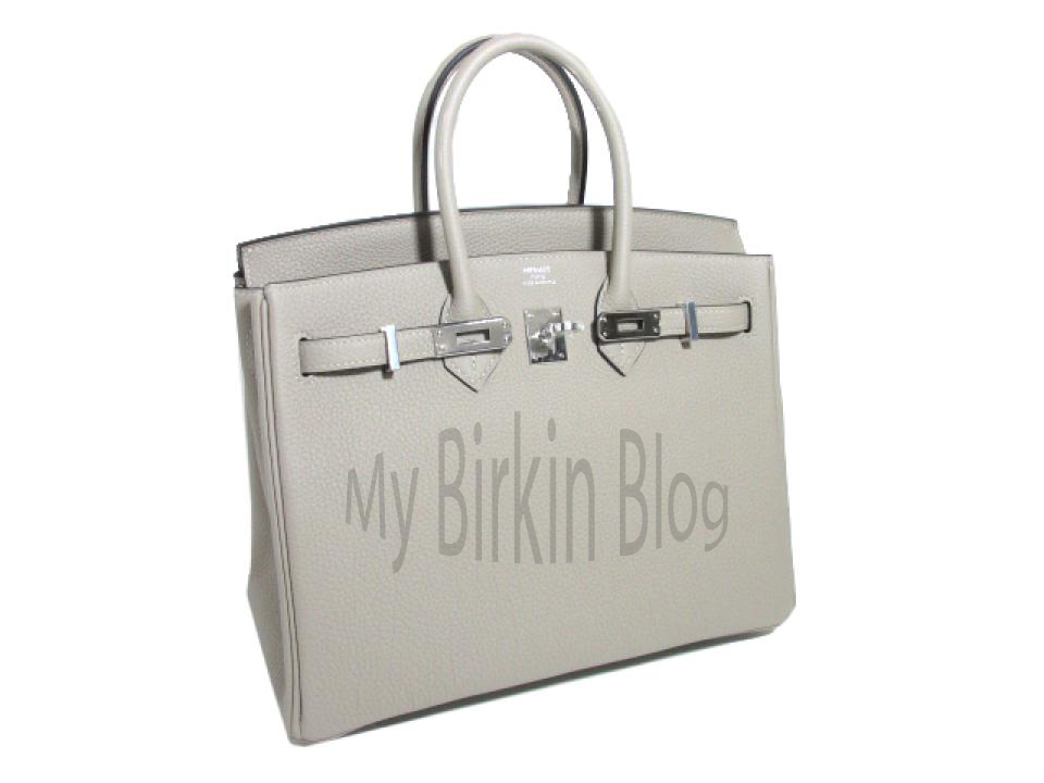 croc kelly bag hermes - My Birkin Blog