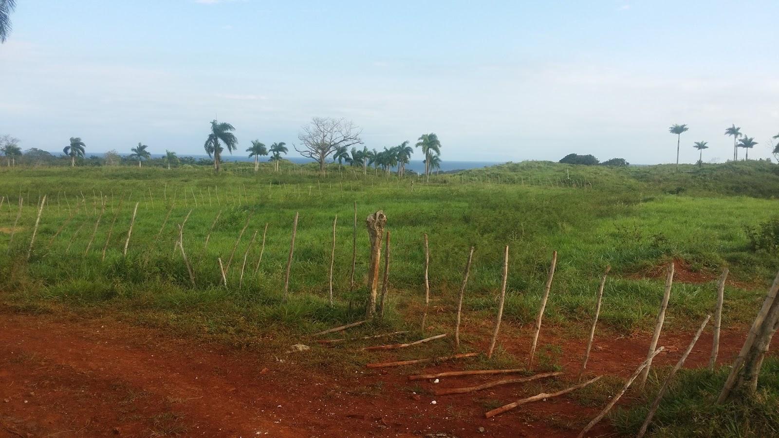 Www ficasas com en la provincia maria trinidad sanchez finca ganadera de 3 600 tareas vista - Fincas sanchez ...