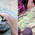 Hotuna: Matasa sun yi farfesu da naman mesa