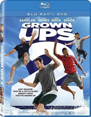Grown Ups 2 (2013) Dual Audio Hindi 480p BluRay x264 300MB ESubs Movie Download