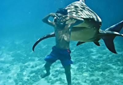 gambar snorkeling lucu banget