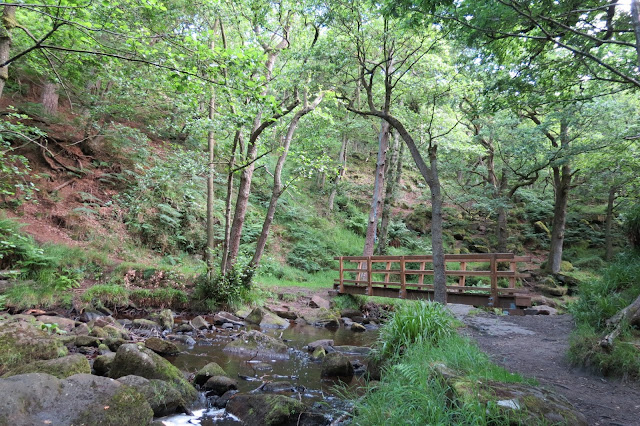 A woodland stream with large rocks in the bed and a small wooden footbridge.
