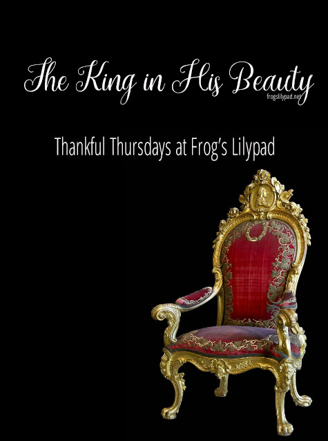 Frog's Lilypad: The King in His Beauty