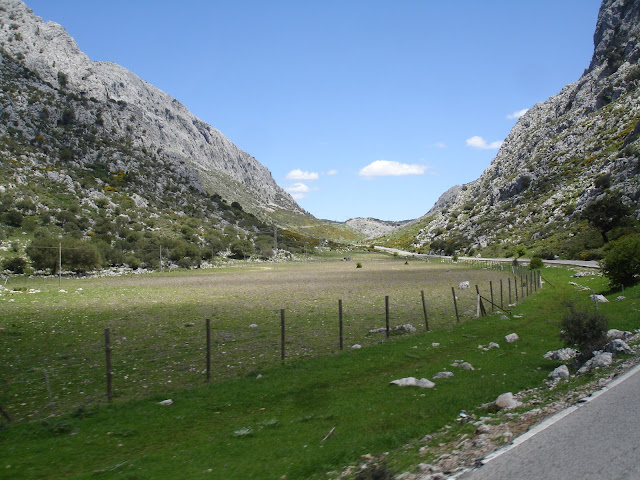 espanha - Passeio ao sul de Espanha DSC00444