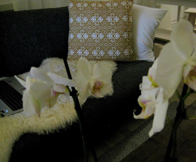 kukka, tyyny, sisustus