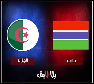 مشاهدة مباراة الجزائر وجامبيا اليوم