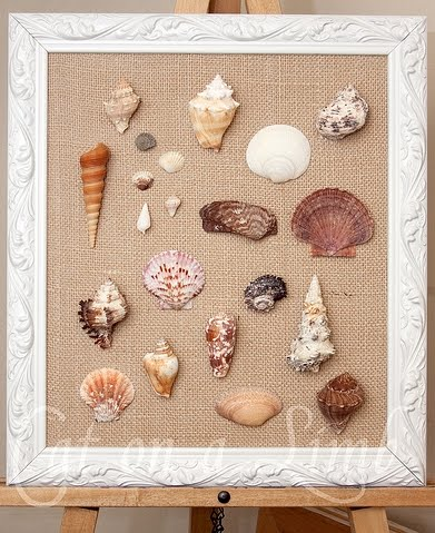 Diy Framed Shell Wall Art Coastal Decor Ideas And