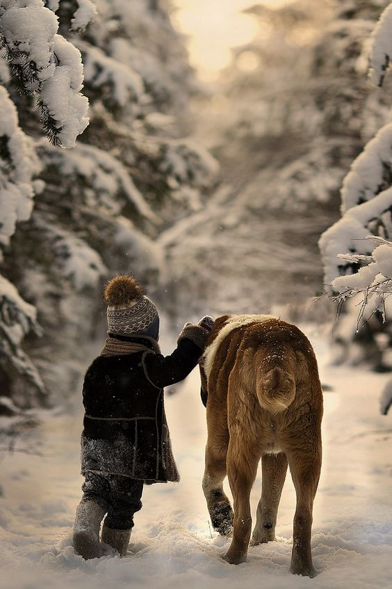Beautiful winter scene with large dog and child in snow