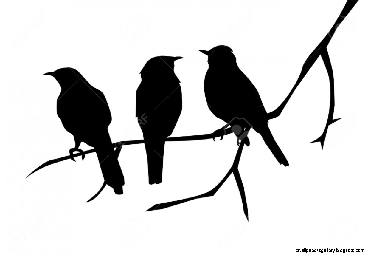 Birds Silhouettes On The Branch Royalty Free Cliparts Vectors