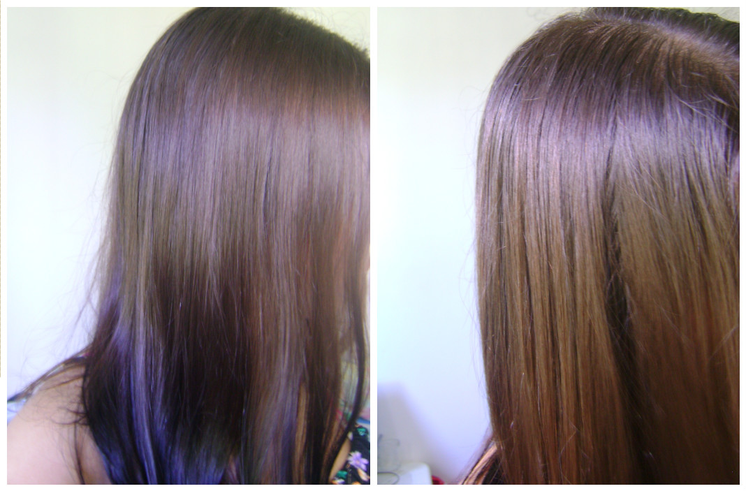 chá de camomila nunca cabelo como usar