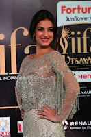 Sonal Chauhan in a stonework Floor Length Silver Designer Gown at IIFA Utsavam Awards March 2017 007.JPG