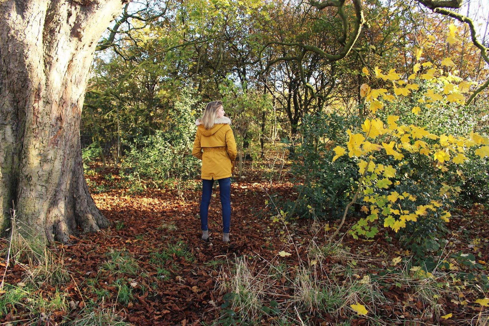 zara yellow coat parka