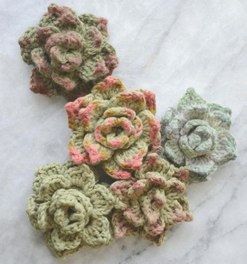 Crochet Succulents - Free Pattern
