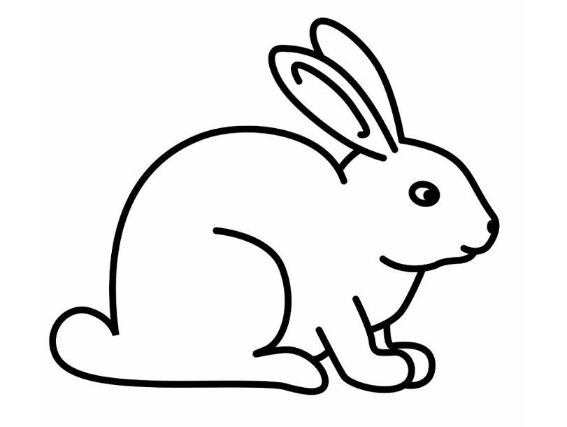 Download Gambar Sketsa Hitam Putih Mewarnai Hewan Kelinci