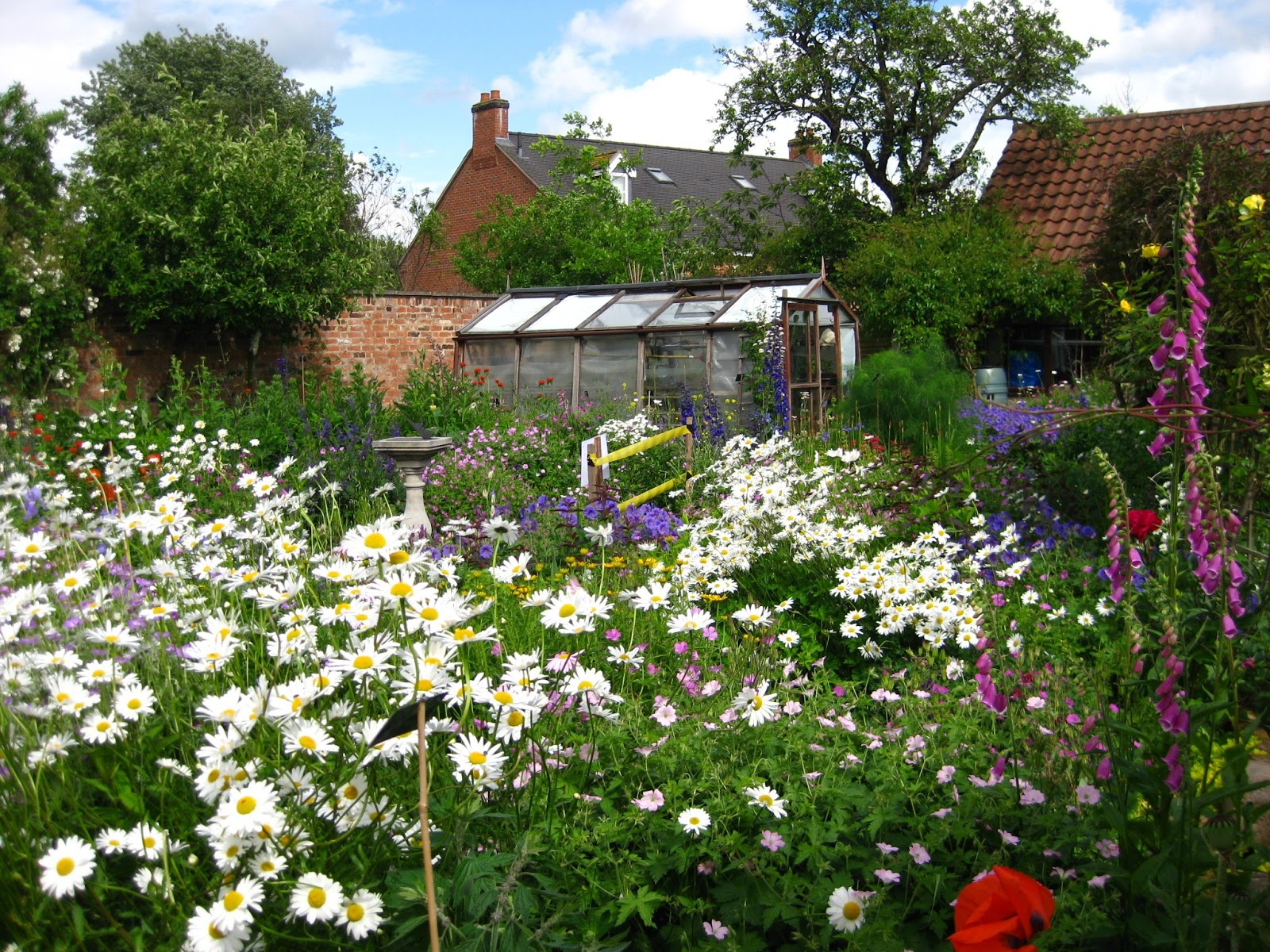 Cottage Gardens: Bunny Mummy: Cottage Gardens
