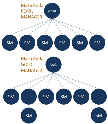 peringkat pearl manager nasa