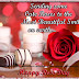 Happy Rose Day celebration Ideas in 2016