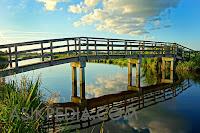 Kisah jatuh dari jembatan sedalam 4 meter saat pergi ke kebun karet