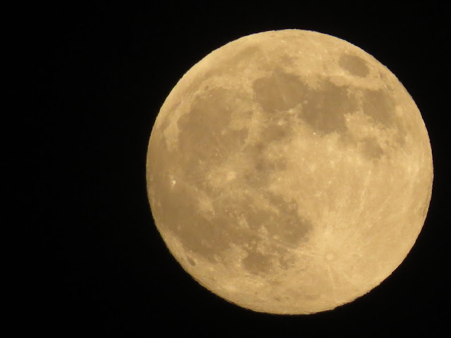 Farmingdale,NY-Supermoon-2013