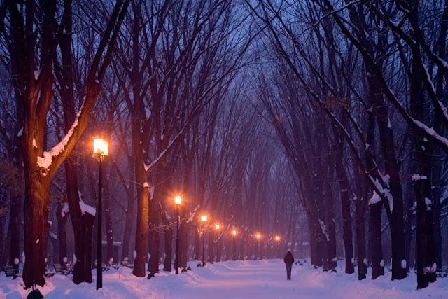 هيراسترو بارك ,بوخارست ,رومانيا Herestrau Park, Bucharest, Romania