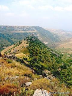 Фотографии Израиля: Гамла (Голанские высоты)