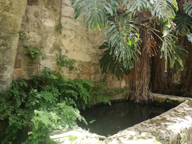 woda w ogrodzie, kamienny zdrój wodny