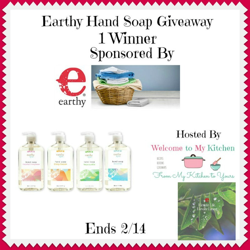 Earthy Hand Soap Giveaway