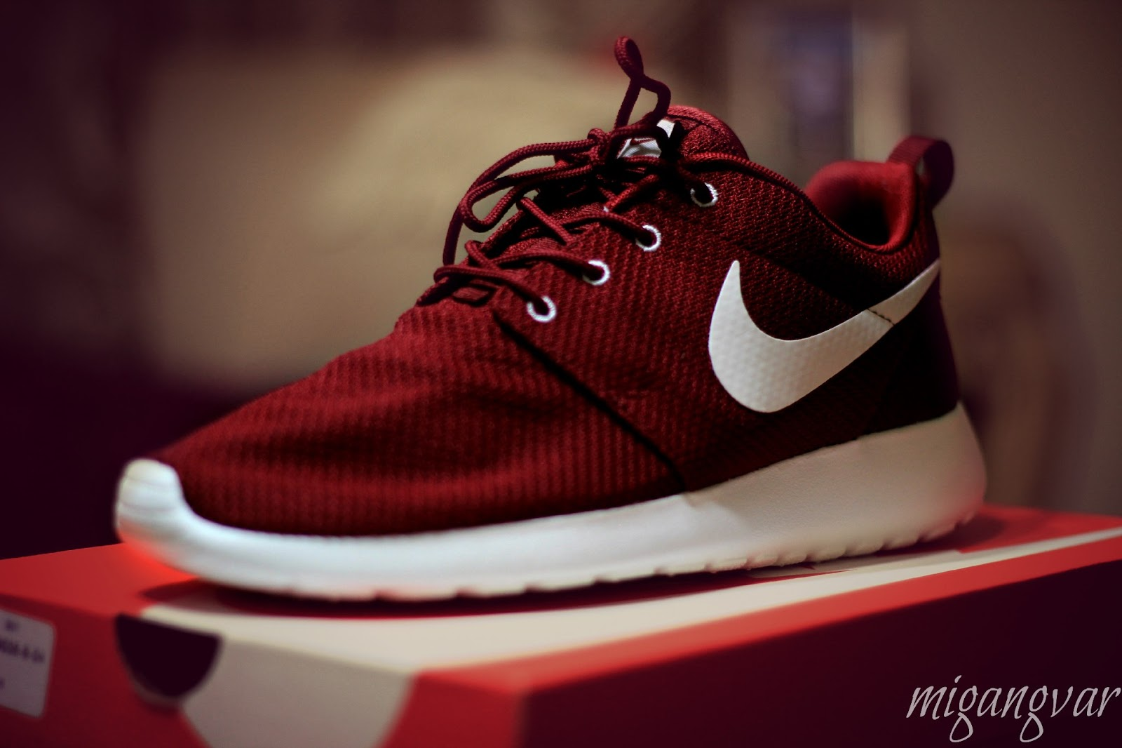 ca5844704417 migangvar Photography  Roshe Runs