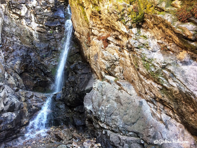Hiking to Rocky Mouth Falls