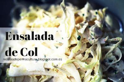 Ensalada de Col con Brotes de Soja y Yogur