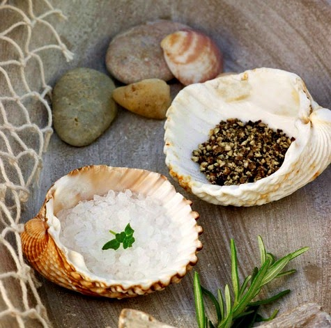 Salt and Pepper Shell Trays