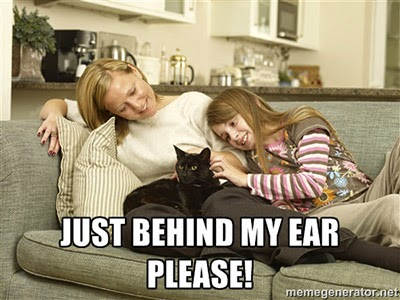 Scratch just behind my ear please!
