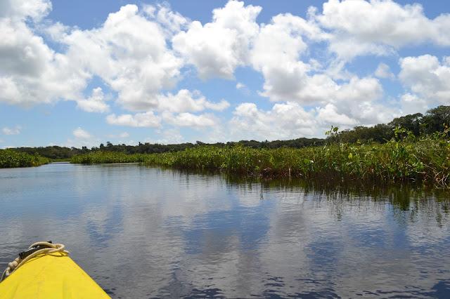 http://les-reveries-d-isisya.blogspot.com/2015/09/une-balade-en-canoe-aux-pripris-de-yiyi.html