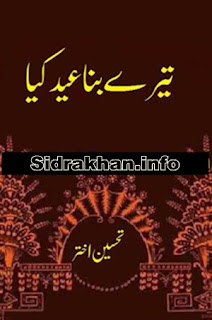 Tere Bina Eid Kia