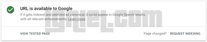 Minta Pengindexan Secara Cepat ke Google