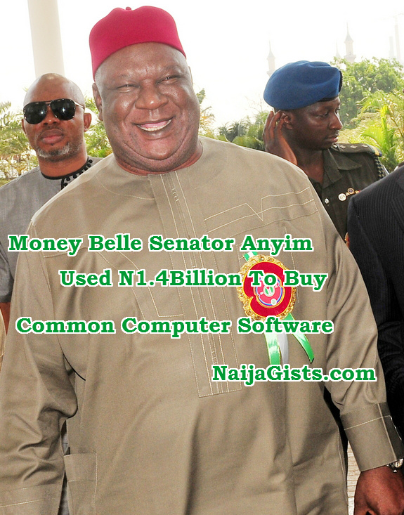 senator anyim 1billion software