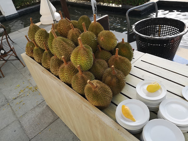 Durian Pop-up Store