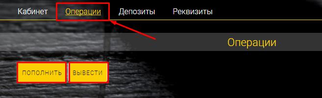 Регистрация в LeoBacker 3
