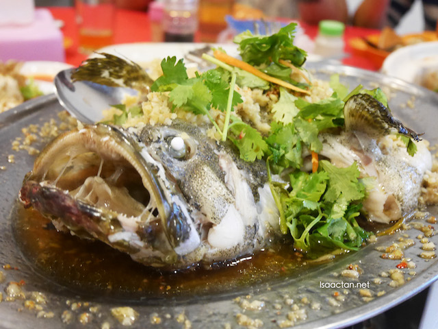Ginger Steamed Giant Grouper