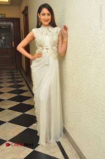 Actress Pragya Jaiswal Stills in Beautiful White Dress at turodu Audio Launch  0053.JPG