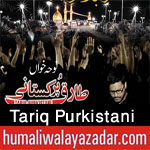 http://www.humaliwalayazadar.com/2016/09/tariq-purkistani-nohay-2017.html