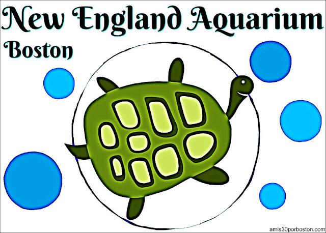 New England Aquarium en Boston